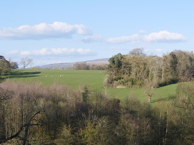 Chris Baxter took this photo of some of the open countryside which the Ellel Holiday Village development would be built on.