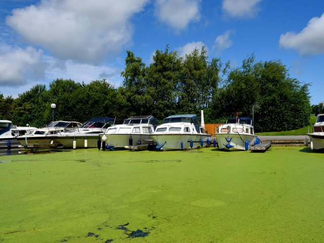 Some frustrated boaters have joked about selling  'Lancaster Canal pea soup'